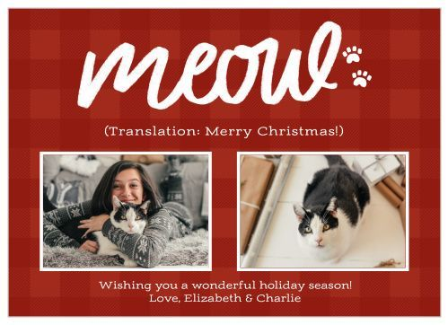 Christmas card of woman and cat