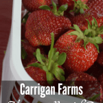 Carrigan Farms – Mooresville, NC