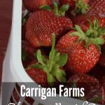 Carrigan Farms – Mooresville, NC