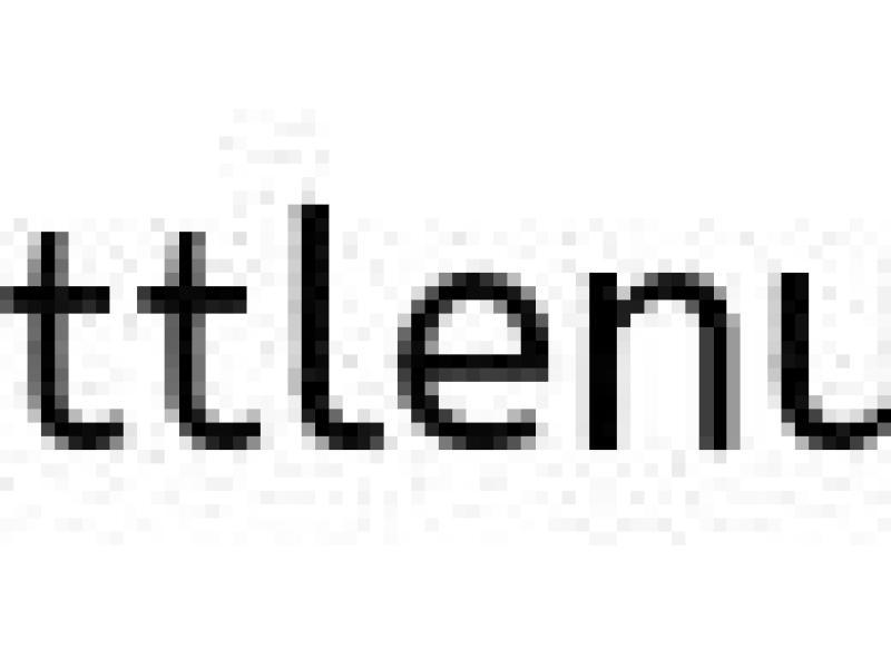 vegan walnut burger