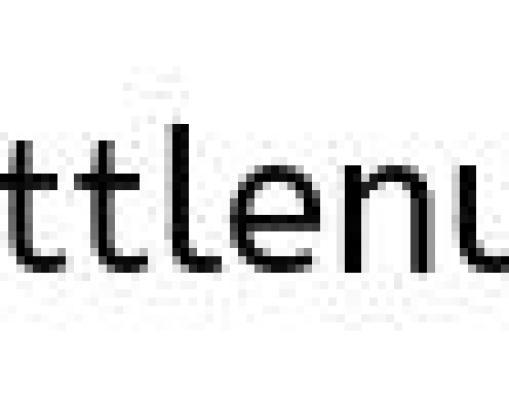 Walnut Burger Plant-Based