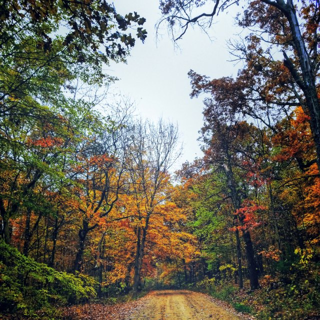 West Michigan fall color tour.