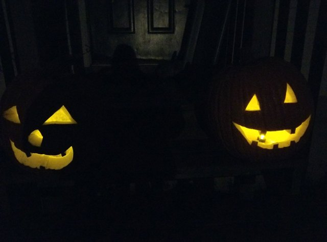 Pumpkins carved as jack-o-lanterns for Hall-O-ween.