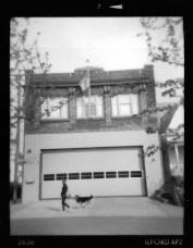 firehouse-dog