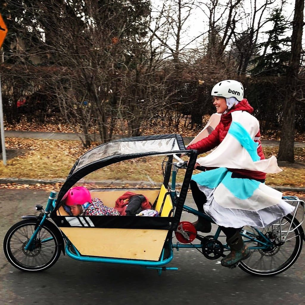 Cargo Bike Review: CETMA Bakfiets