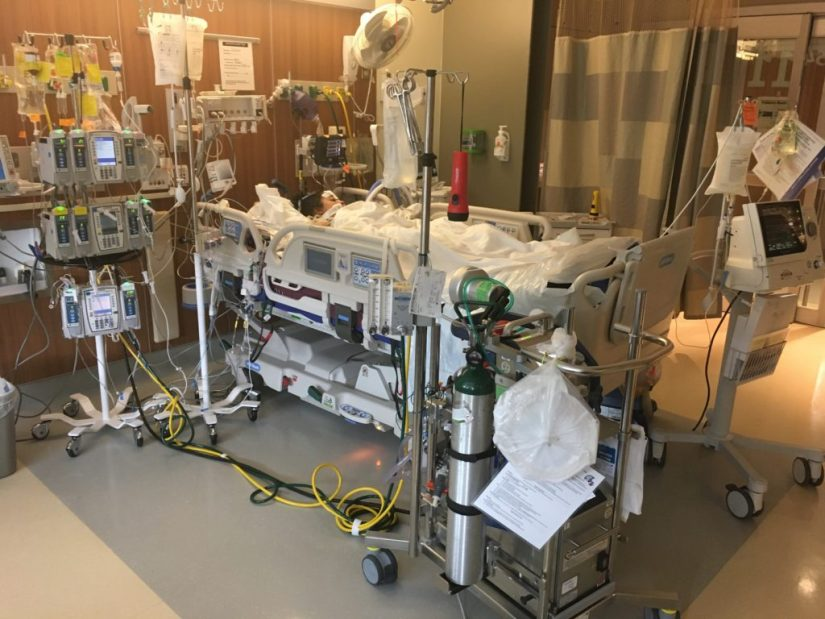 This Mommy's Heart - My PPCM Story - On ECMO