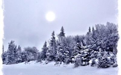 This morning's ski run!!