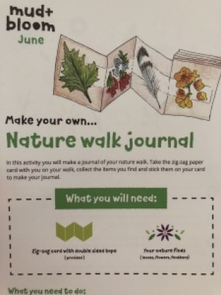 mud and bloom nature walk journal