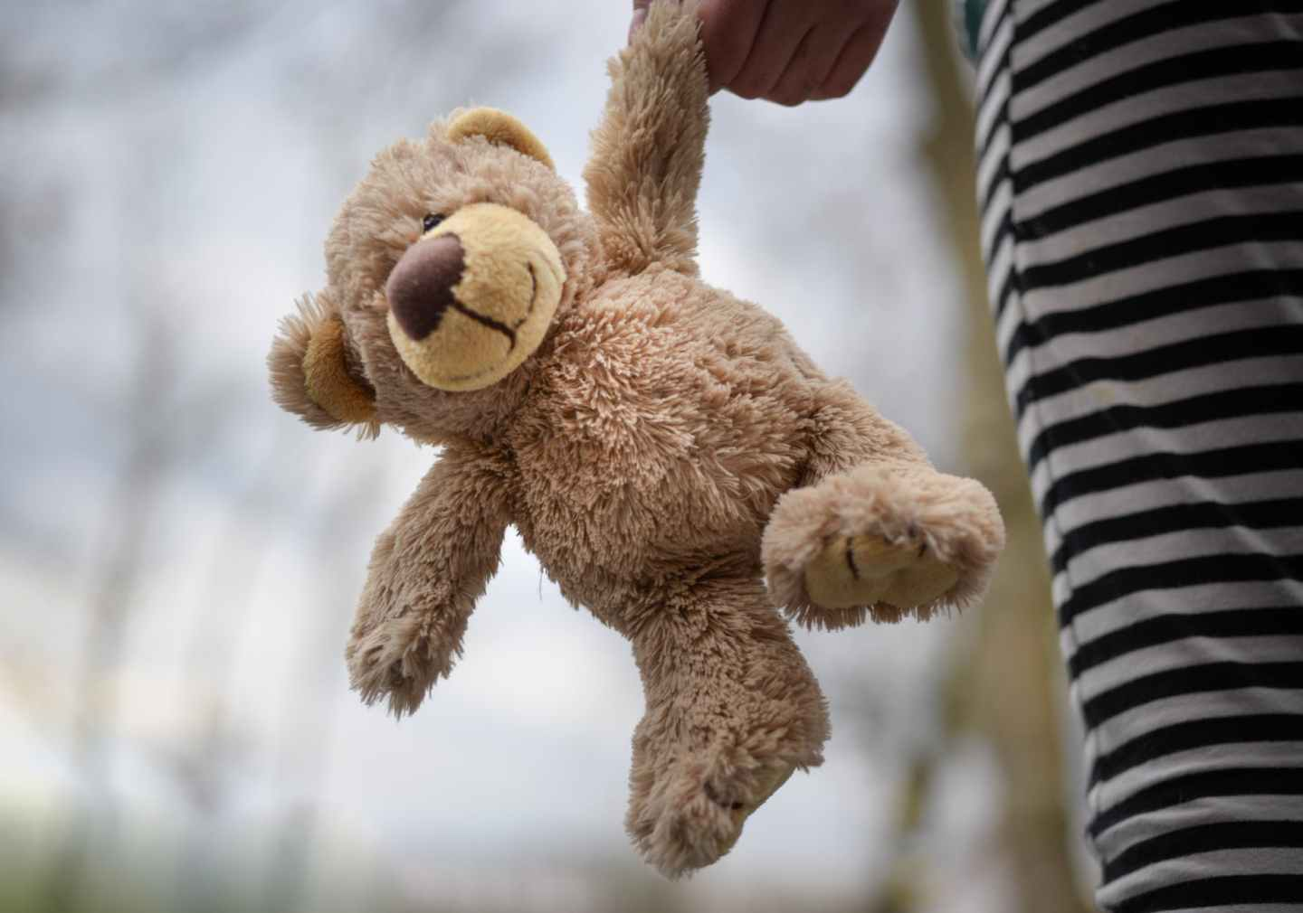 closeup photography of brown teddy bear