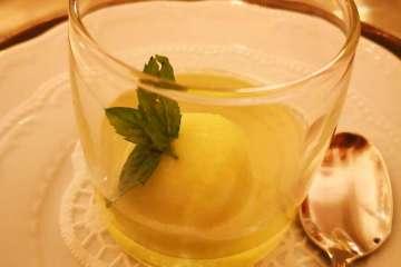 freschezza sorbetto alla melissa