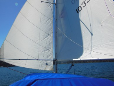 Genoa held wing-and-wing by a boat hook