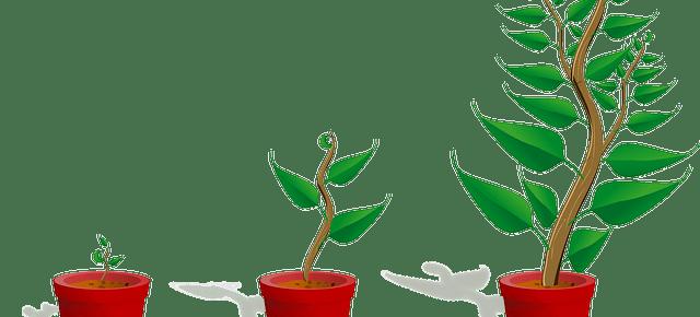 side-hustle-potential