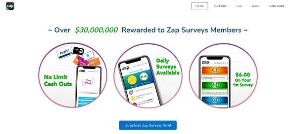 Zap-Surveys