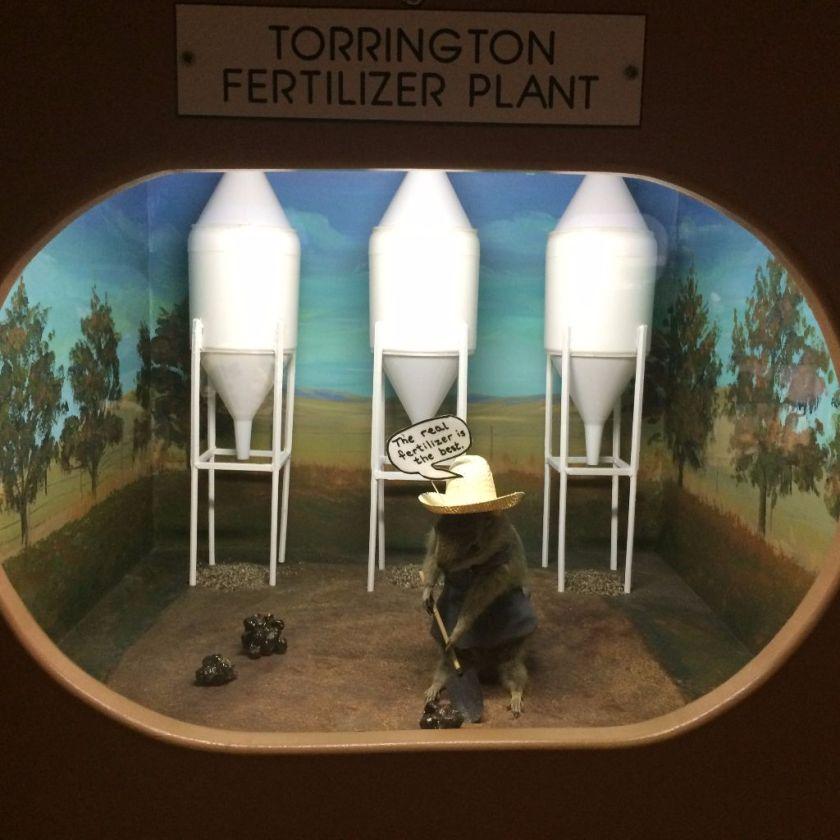 Torrington Gopher Museum