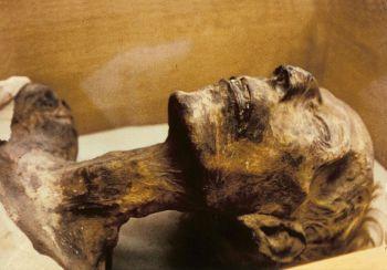 The Mummy of Ramses II.