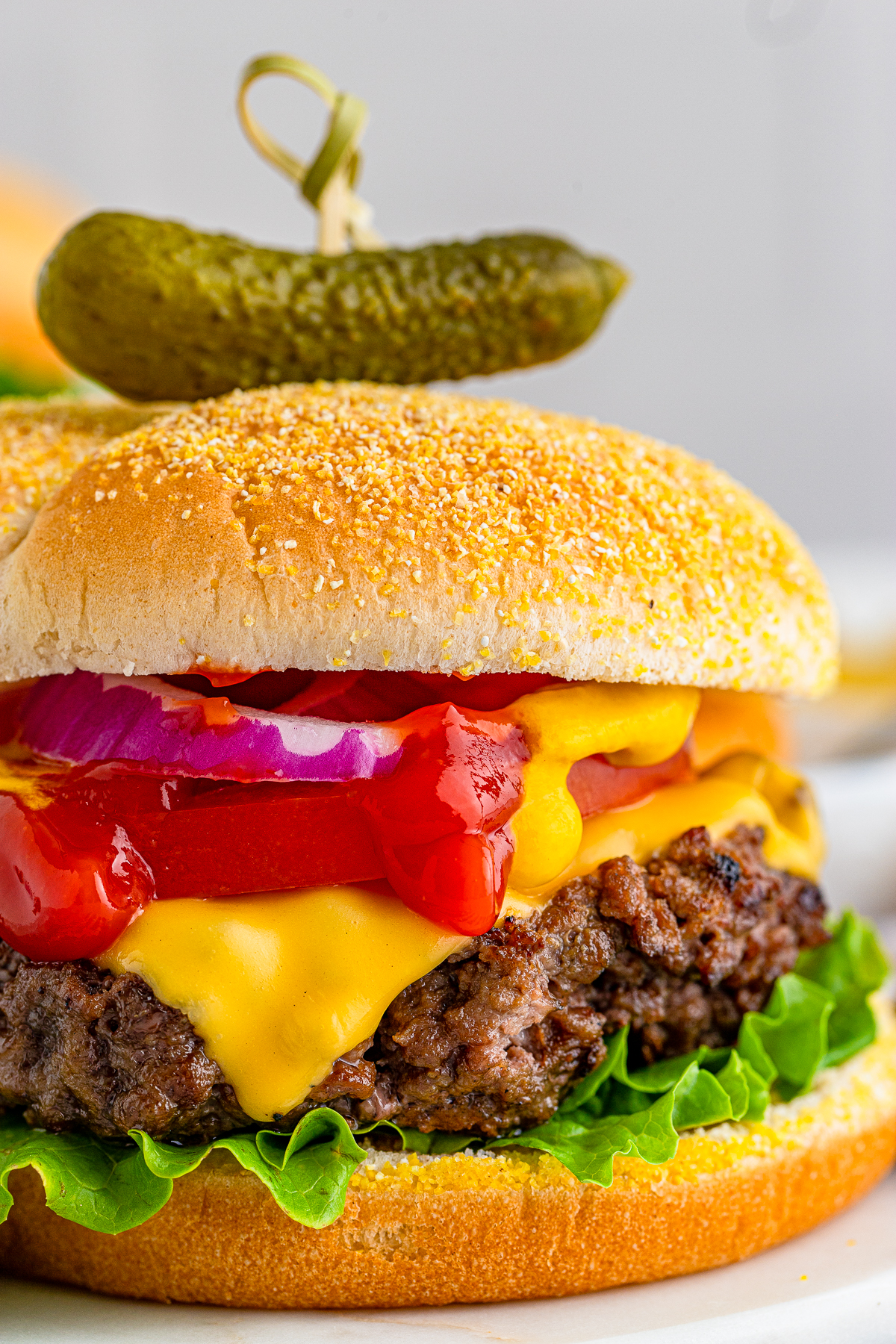 Close up side view of Cheseburger showing the burger and toppings
