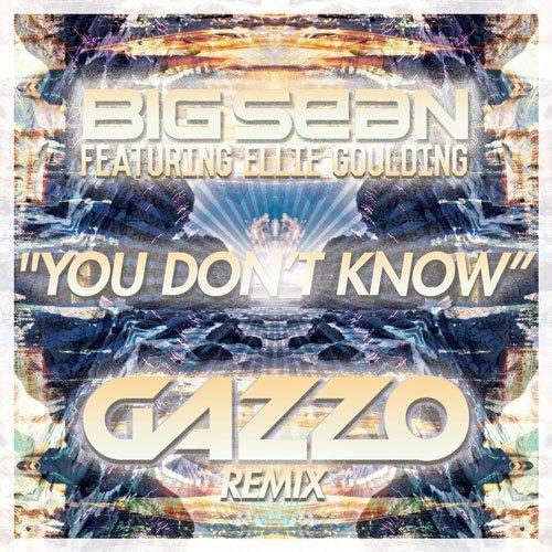 [PREMIERE] Big Sean feat. Ellie Goulding - You Don't Know (Gazzo Remix) : Electro House Remix [Free Download]