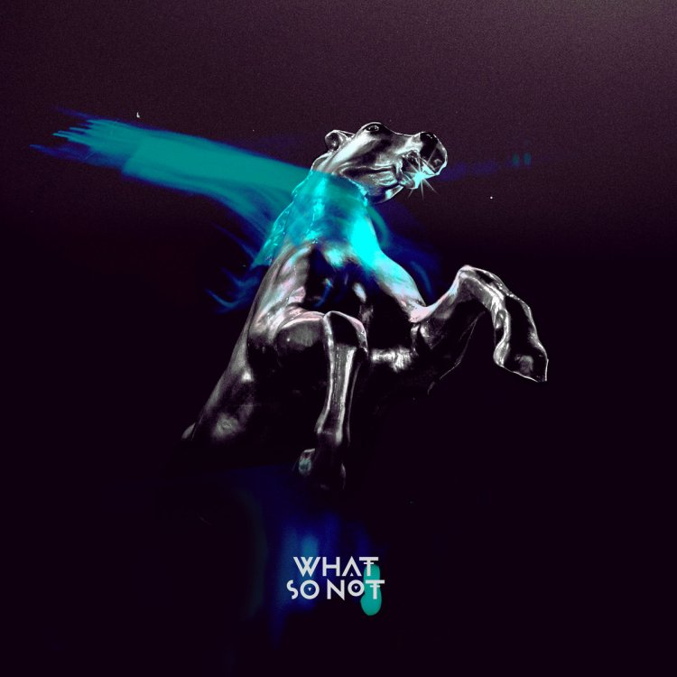 What so not all the beautiful things album