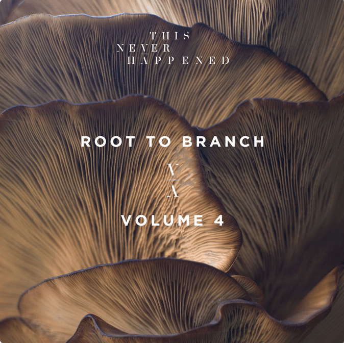 root to branch volume 4