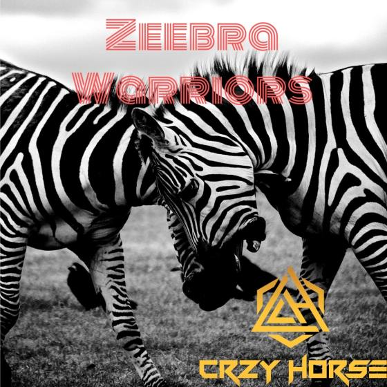 Zeebra Warriors - Cover Art