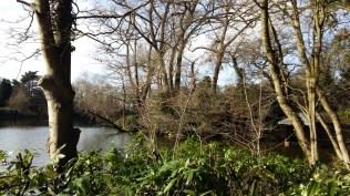 Moseley Park 1