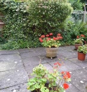Garden listing pic 1