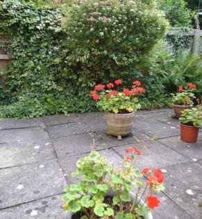 Garden listing pic 1
