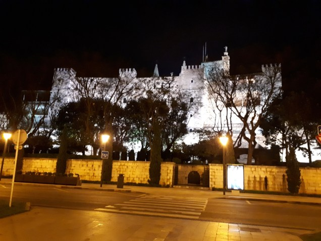 Palma cathedral at night