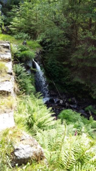 Waterfall 2 Gwydyr Forest Betws y Coed