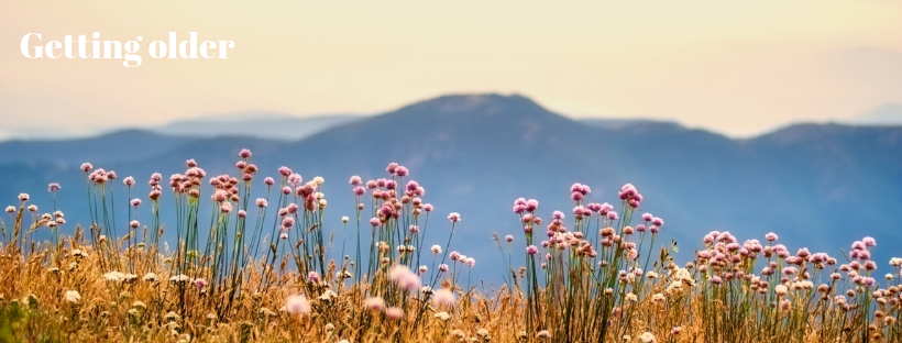 Getting older - field of flowers with mountain background