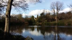 Moseley Park 5