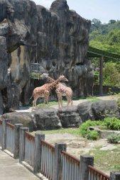 2013-07-14 Taiwan Trip 1681 ---