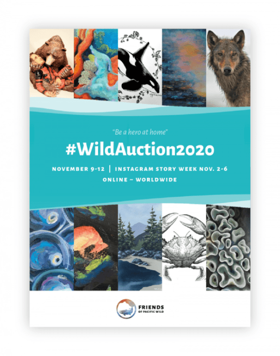 Wild Auction 2020 Starts Today!