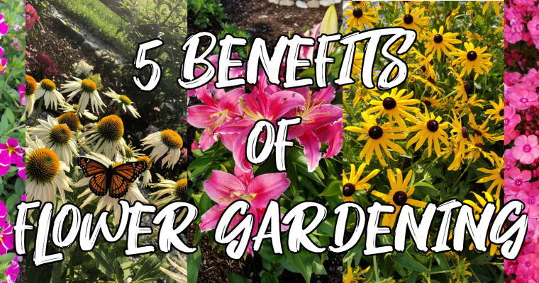 5 Benefits of Starting a Flower Garden