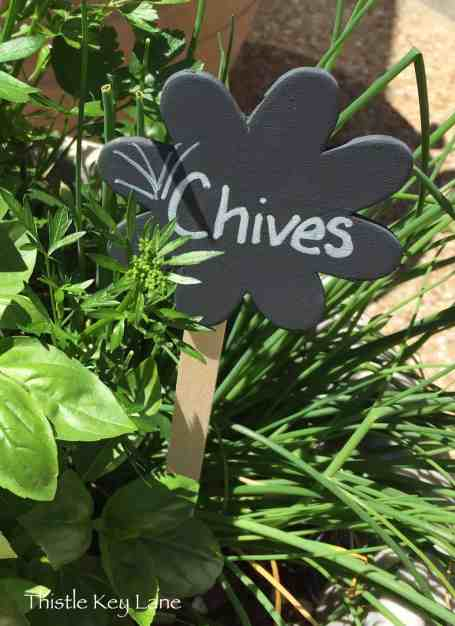 Chives Marker