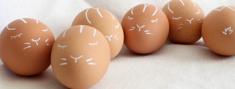 Natural Brown Eggs With A Bunny Face
