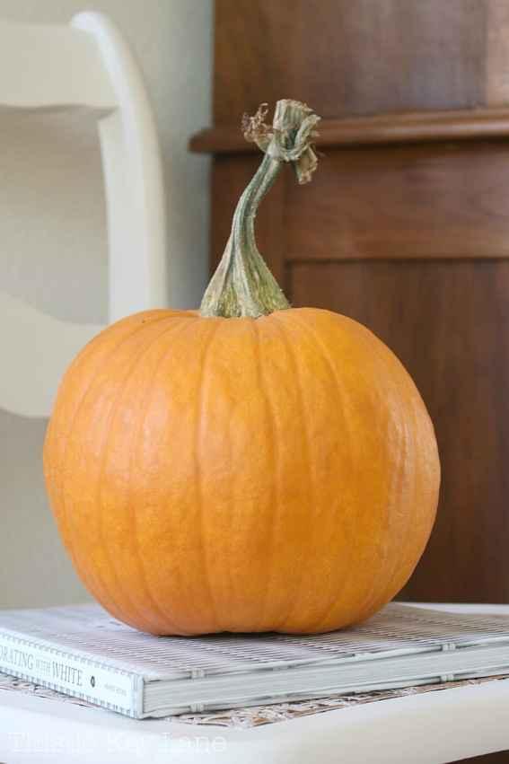 The perfect orange pumpkin.