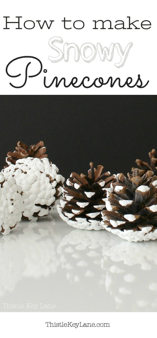 This is the best way to make snowy pinecones.