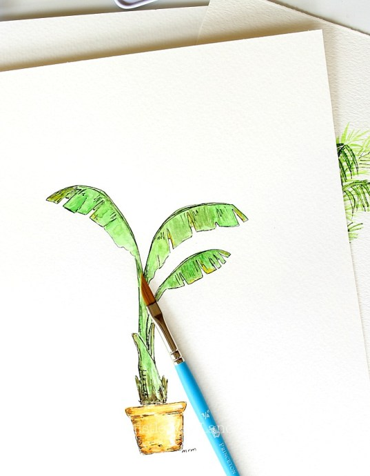 Banana tree watercolor by Thistle Key Lane.