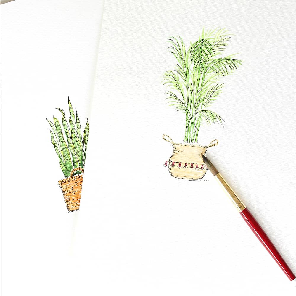 New Houseplant Watercolors