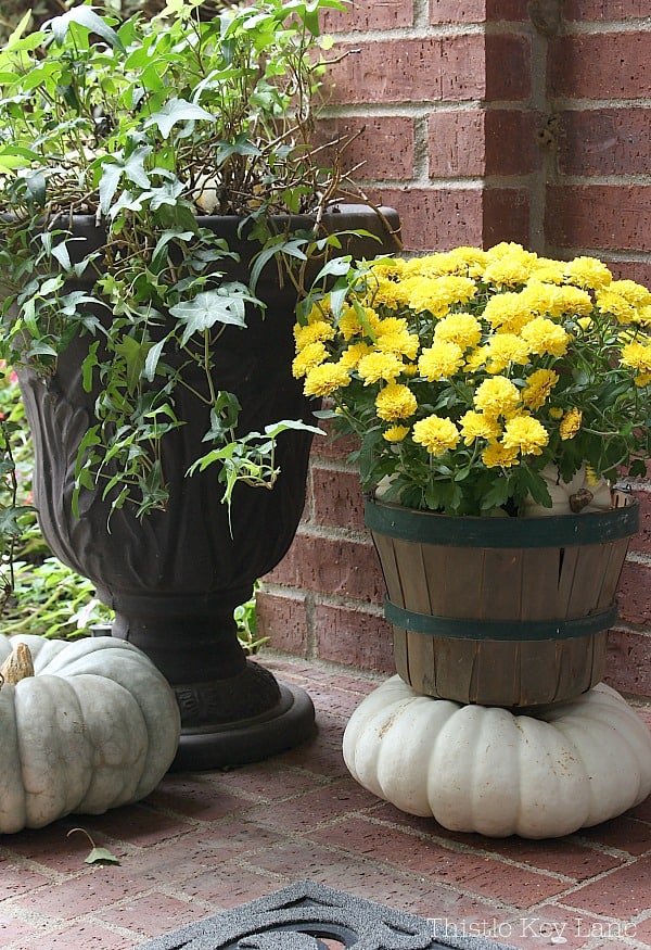 Yellow mums in a basket stacked on a pumpkin.