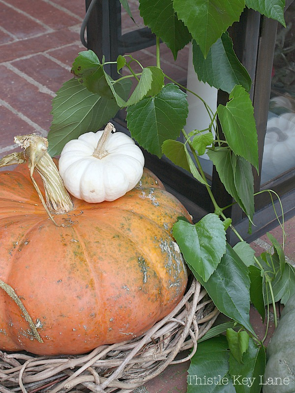 Cozy fall vignette with pumpkins and a lantern.