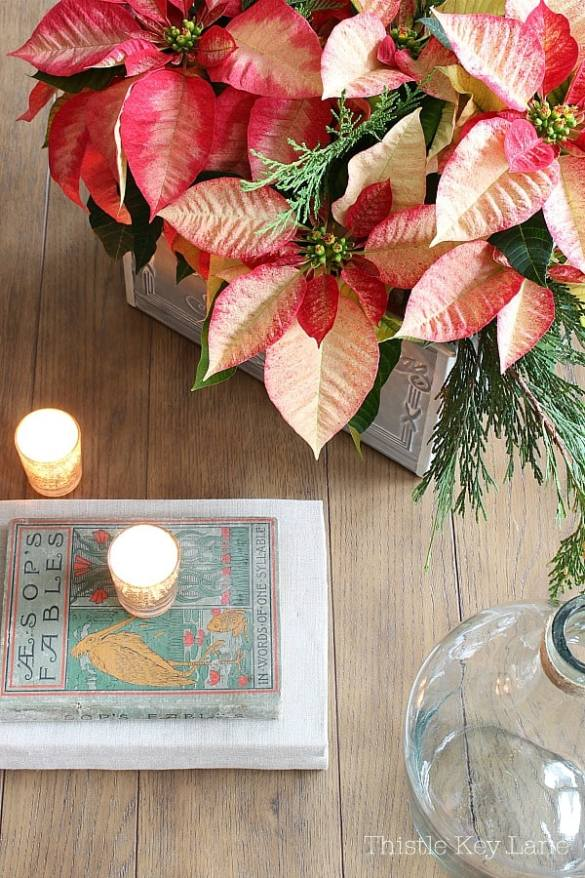 Top view of poinsettia, candles and books.