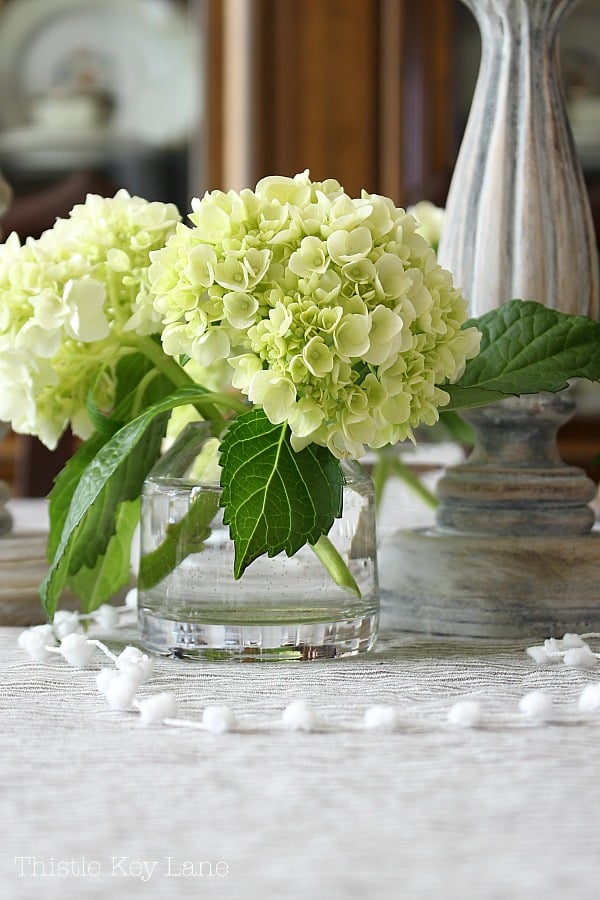 Green hydrangea stems in a clear glass vase.