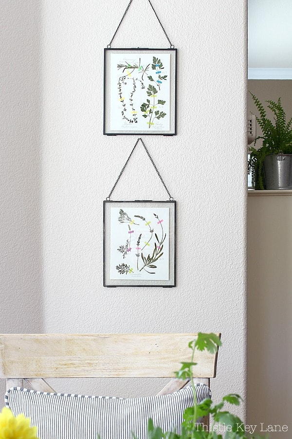 Wall art with pressed herb collages.