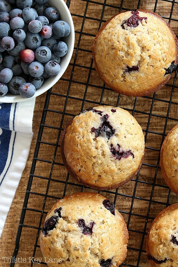 Fresh from the oven on a rack basic blueberry muffins recipe.