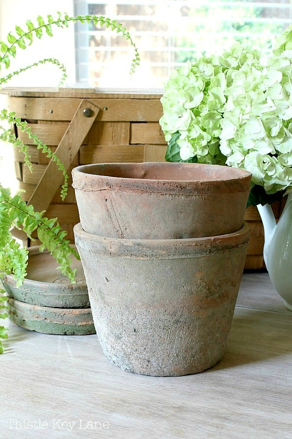 Vintage clay pots with greenery.