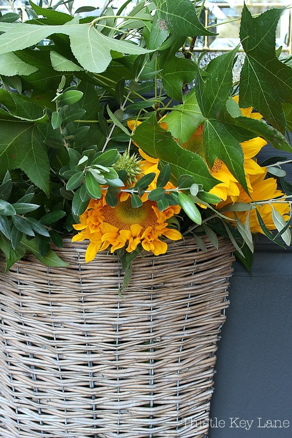 Sunflowers and branches in a basket.
