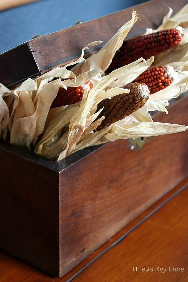 Antique tea box with dried ears of Indian corn.