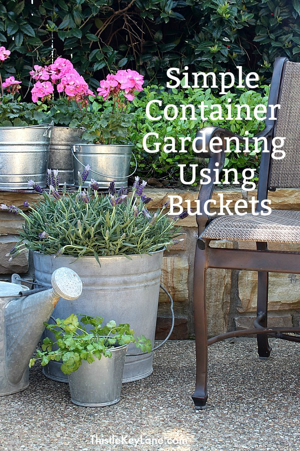 Simple Bucket Container Garden - For Patio Flowers.